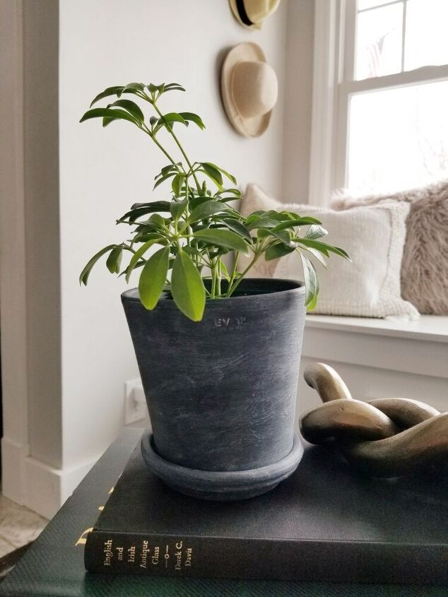 vintage concrete look flower pot