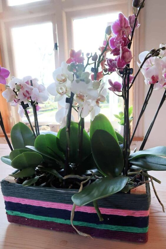how to make an easy diy orchid centerpiece