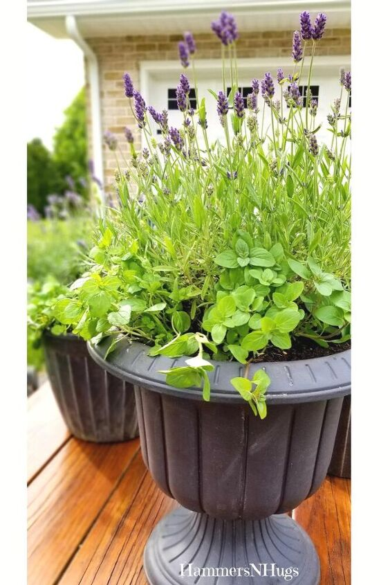 how to make a mosquito repellent patio planter