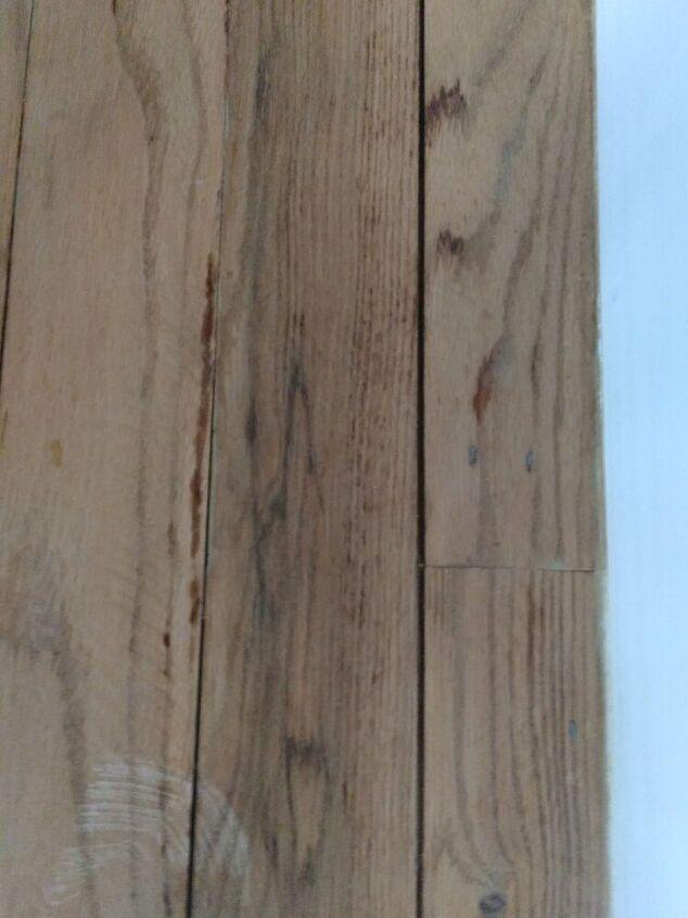 q hardwood floor refinishing