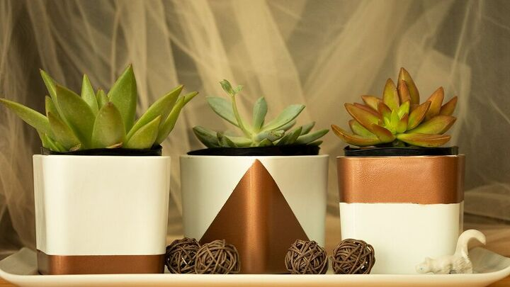 cute and simple succulent containers for your home or office