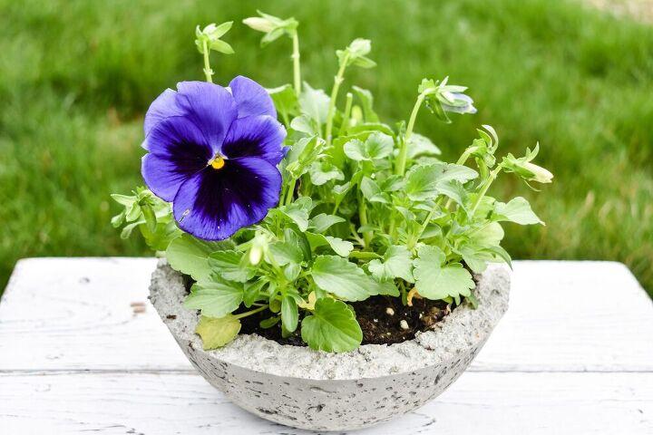 how to make a diy concrete bowl planter