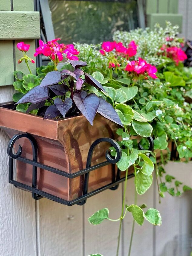 how to plant flowers in window boxes