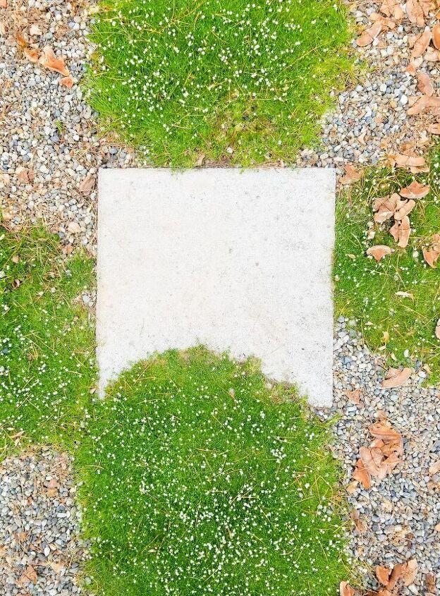 how to plant groundcovers around pavers
