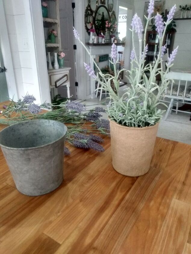 dollar store potted lavender