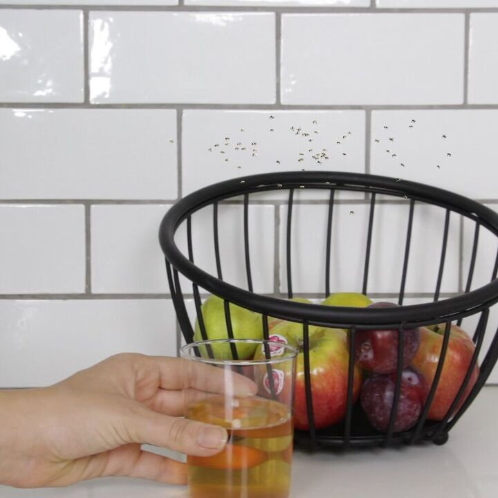 s 15 unexpected ways to use dish soap in your home, Trap pesky fruit flies
