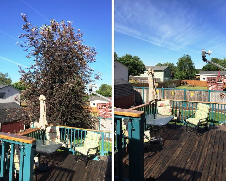 what i did to create some privacy for the deck