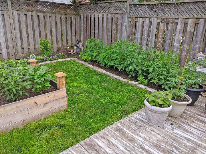 how i expanded my backyard growing space more veggies, After