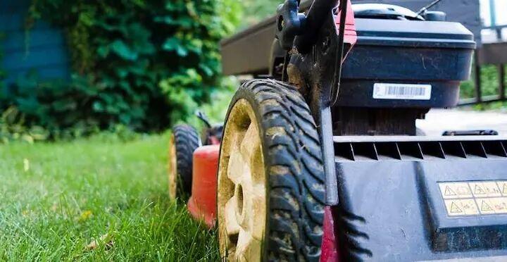best lawn mowers, best lawn mowers