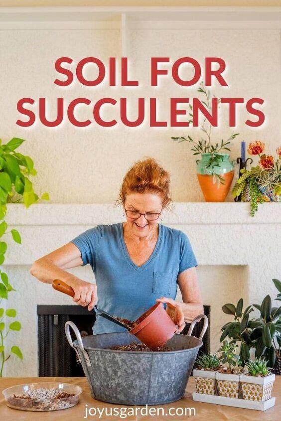 succulent soil mix the best for succulent plants