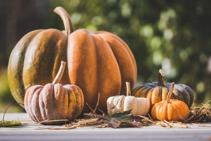 how to make a yarn pumpkin, Photo by Ylanite Koppens on Pexels com