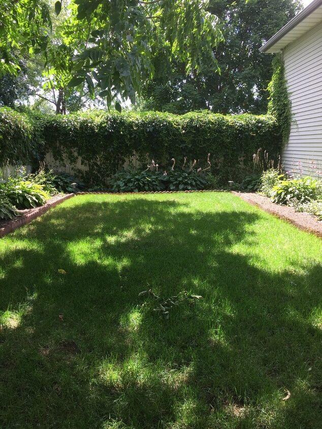 how i created a secret garden area part 1