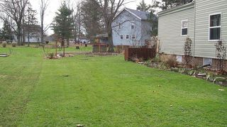 q need ideas for new soggy place, gardening, landscape, Property ends where you can see the grass changes