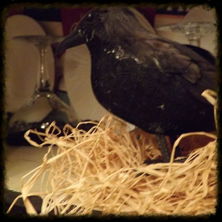 My $ store crow sits perched on a spray of raffia