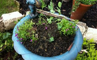 planter ideas, gardening, Old Bird Bath