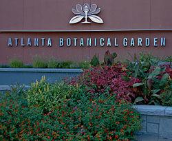 visiting the atlanta botanical garden with erica glasener, gardening