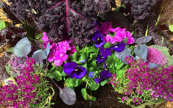 The Color Purple: Monochromatic Edible Container Garden