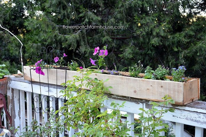Fill with your favorite flowers, mine are mostly trailing types so they will drape down beautifully, and enjoy all summer long.  Water with an organic liquid fertilizer once a week for lots and lots of blooms.