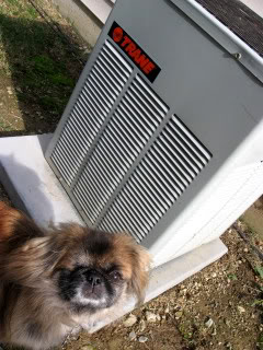Put a cover on your air conditioner.