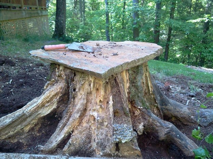 making a fairy home from an old stump, gardening, outdoor living