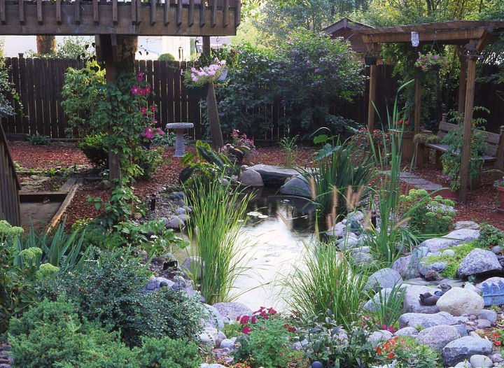 The pond often takes center stage in the yard. And look ... no grass to mow!