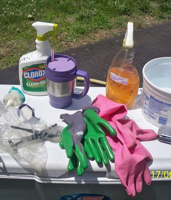 the leopart tire planter, gardening, repurposing upcycling, Assemble all necessary cleaning products Drink yep Bleach all purpose cleaner rubber gloves etc