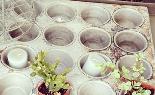 using succulents with flea market finds, flowers, gardening, repurposing upcycling, succulents