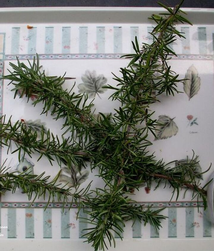 Leggy sprigs that I couldn't bear to toss out.http://ourfairfieldhomeandgarden.com/diy-project-make-a-fresh-rosemary-wreath/