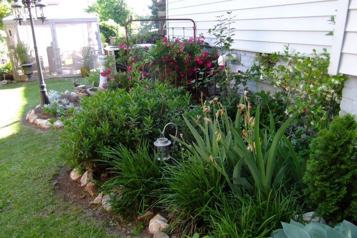 progress made, gardening, landscape