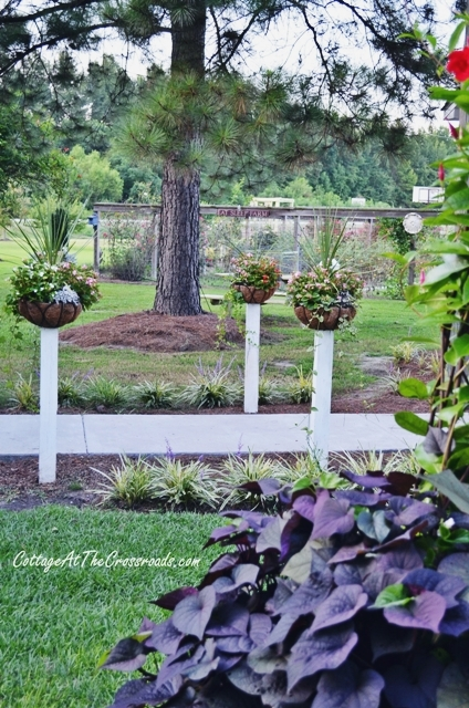 how to mount flower baskets onto wooden posts, curb appeal, diy, flowers, gardening, how to, repurposing upcycling, woodworking projects, Summer annuals will be changed out in the fall with pansies that will bloom all winter
