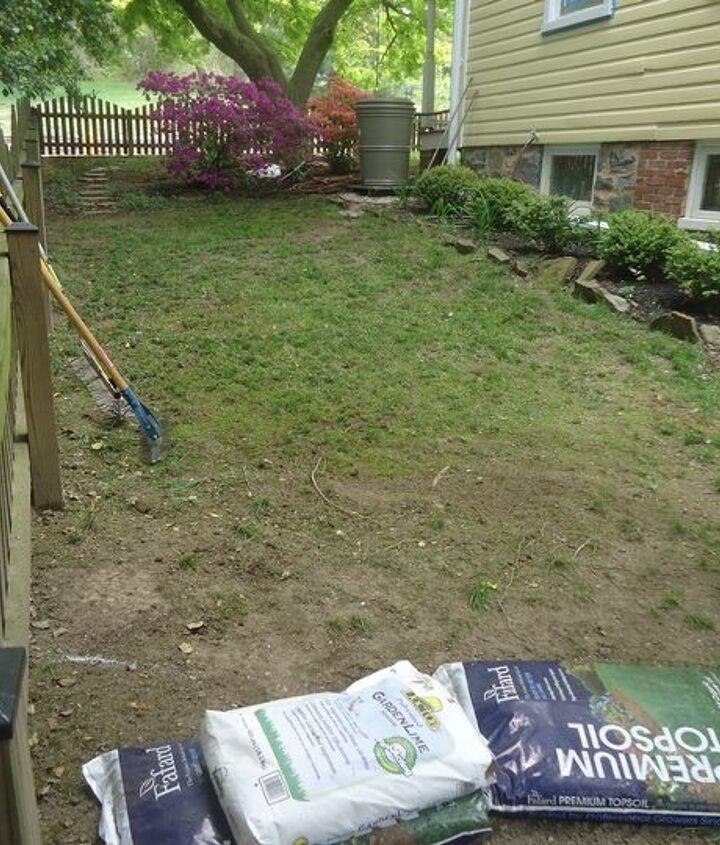 prepping for overseeding, a slope downhill of the rain barrel.