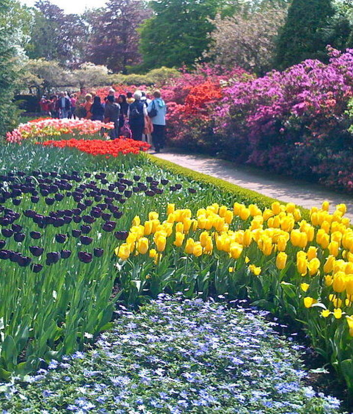 The grounds of Keukenhof Gardens are immaculate. The paths lead you from one spectacular garden to another.
