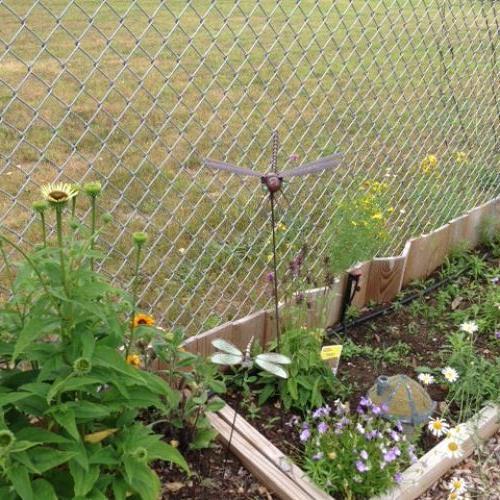 Always need a bit of garden art