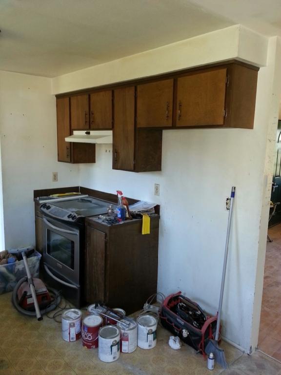 q kitchen cabinet ideas please, kitchen cabinets, kitchen design