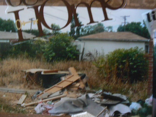 Our backyard before. This was the insides of an RV. So our first taks was clearing this and the weeds.