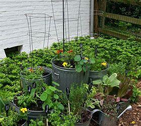 Galvanized Garden Repurposed Container Planting, Container Gardening,  Gardening, Repurposing Upcycling, Reuse Old