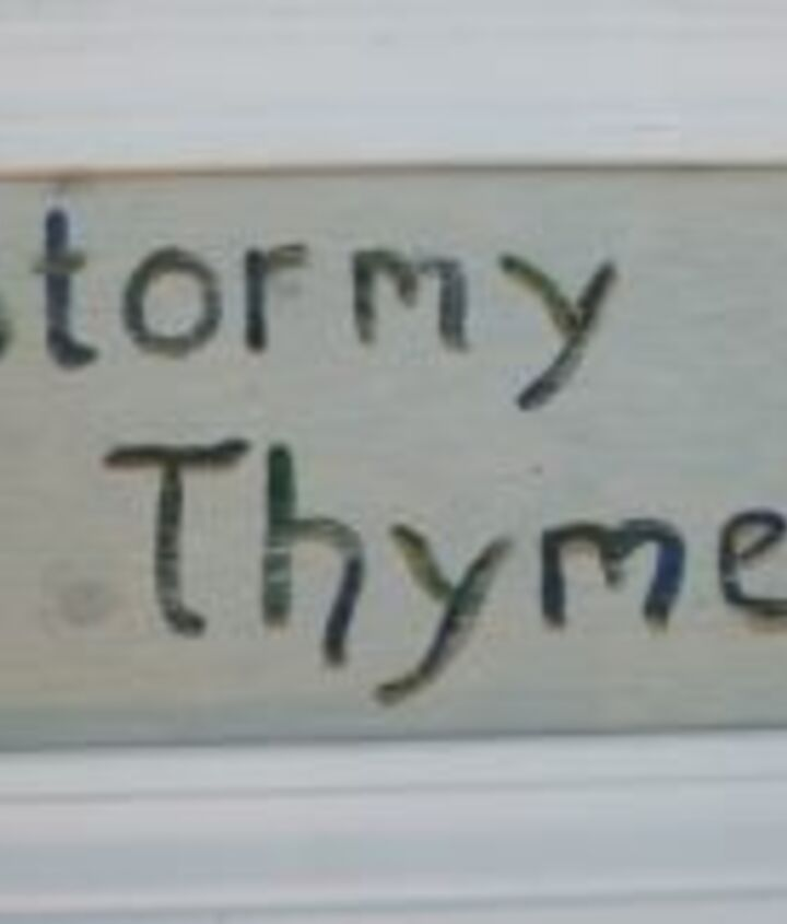 There are lots of Thymely Sayings on Drought Smart Plants; http://www.drought-smart-plants.com/signs-of-the-thymes.html