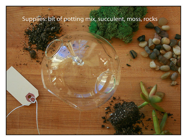 how to make a terrarium, crafts, gardening, terrarium