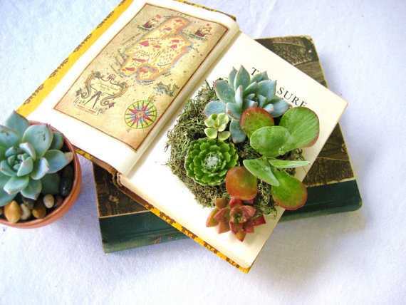 Books. Instead of letting your books collect dust on a shelf, use old novels as a potting solution! For more ways to decorate with books in your home, read: Four Ways to Decorate with Tomes.
