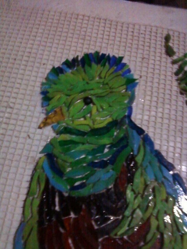mosaic quetzal national bird of guatamala, home decor, kitchen backsplash, kitchen design, tiling