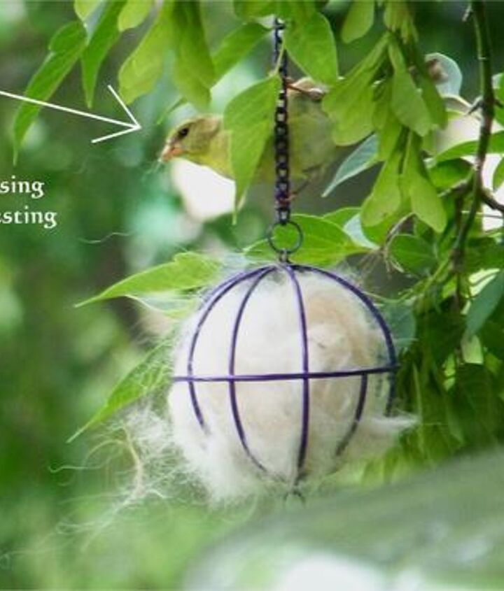 hummingbird nest helper, gardening