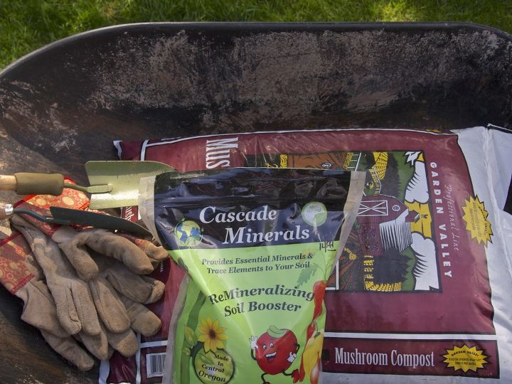 We consulted with our local nursery, who advised us to amend our soil with compost and minerals with trace elements.