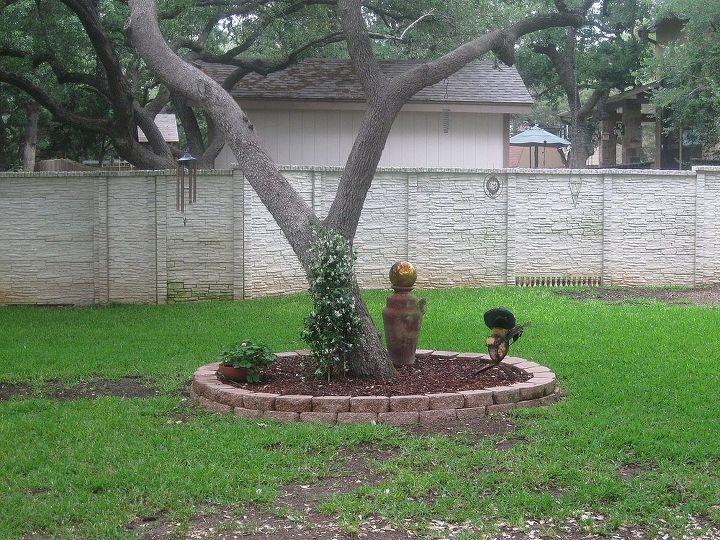 """Backyard """"before""""."""