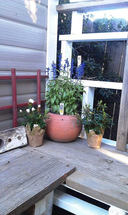 Corner of the potting table.
