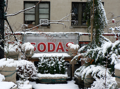 """Wrapping Year One. Winter Season 2009-10. (This image was featured in """"I've never seen a billboard lovely as a tree"""" @ http://www.thelastleafgardener.com/2011/05/ive-never-seen-billboard-lovely-as-tree_14.html)"""