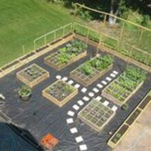 vegetable garden layout ideas with picture ledlighting2011 s blog, gardening