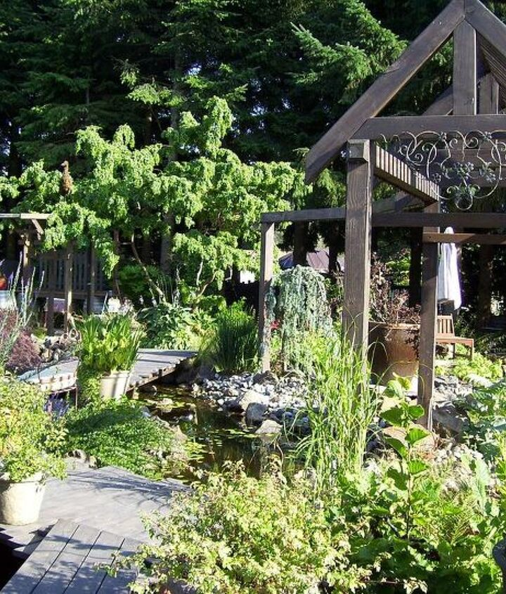 """Each wood feature you see is acutally a water feature. The pergola to the right is a """"rain wall"""" I created from drip system emitters. Simple, beautiful and very inexpensive."""