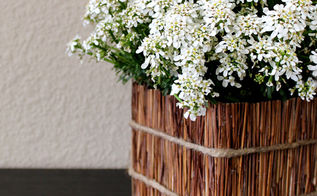 cereal box planter box upcycle, crafts, flowers, gardening, repurposing upcycling