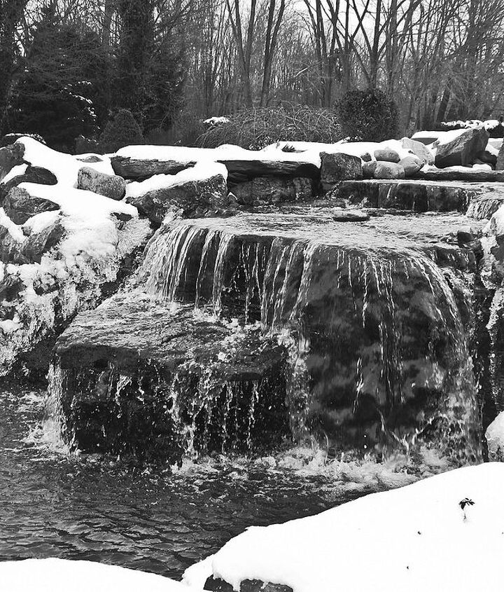 Winter Falls in Black and White