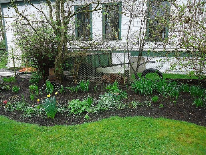this is my next project how to make this prettier, gardening, landscape, My shade garden but look at the junk in behind